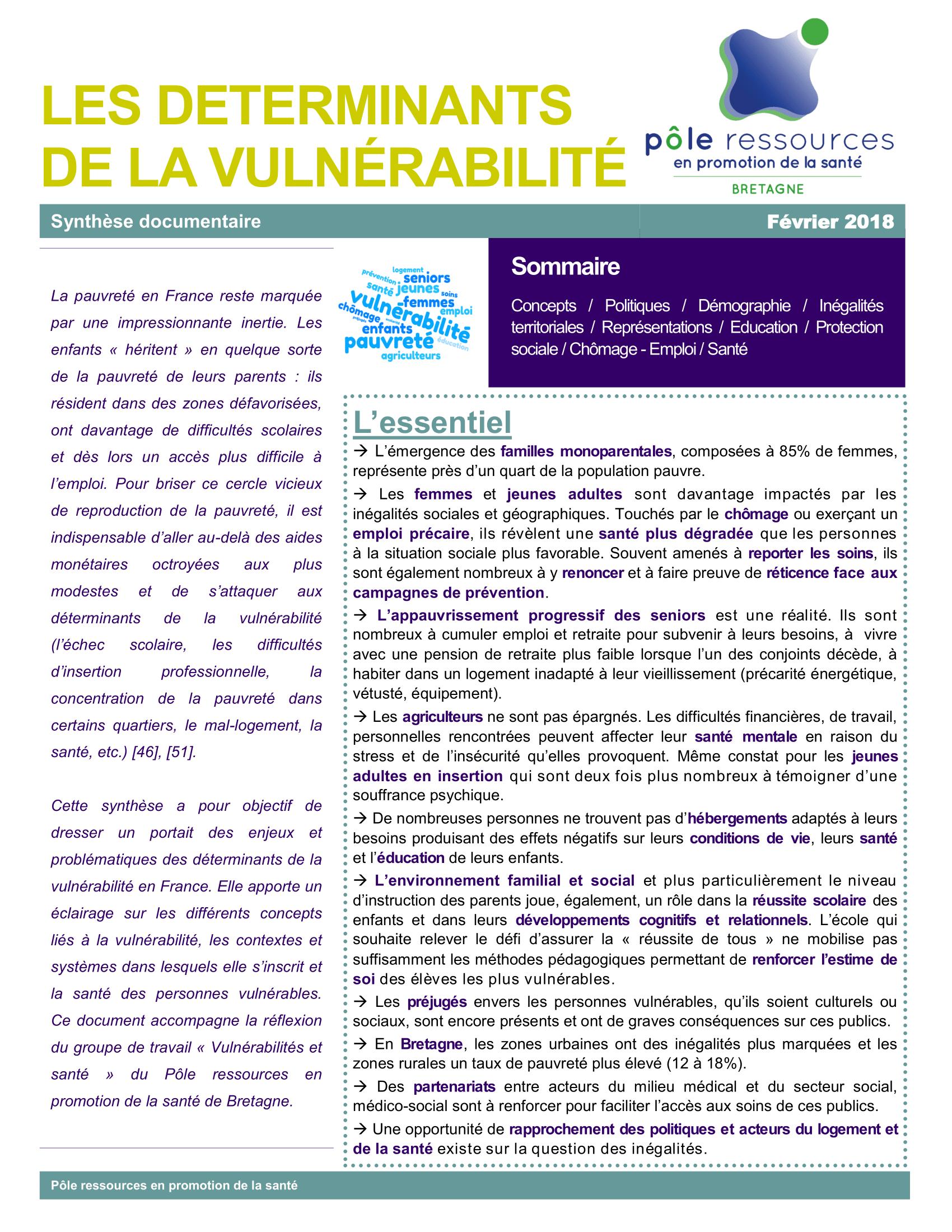 """Synthèse """"Déterminants de la vulnérabilité"""""""
